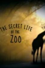The Secret Life Of The Zoo: Season 2