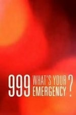 999: What's Your Emergency: Season 2