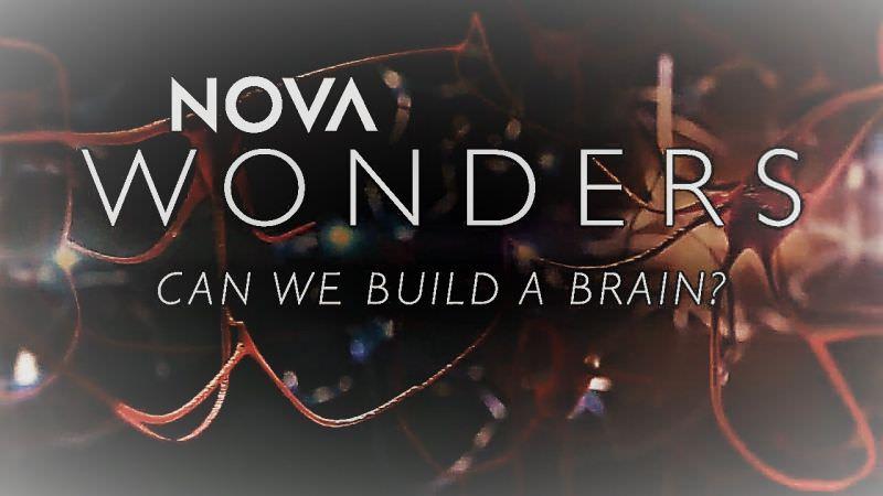 Nova Wonders: Season 1