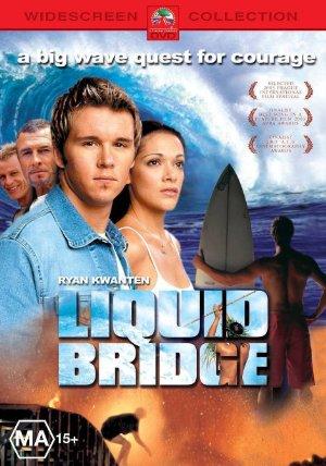 Liquid Bridge