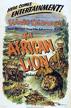 The African Lion