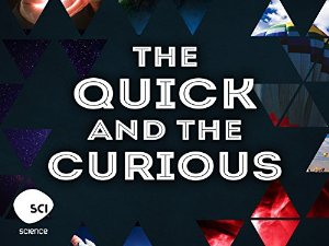 The Quick And The Curious: Season 1