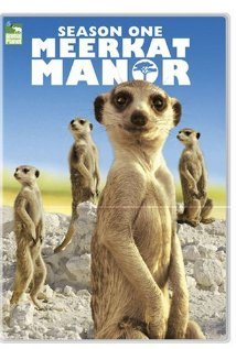 Meerkat Manor: Season 2