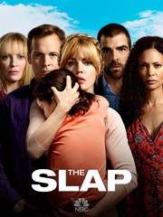 The Slap: Season 1