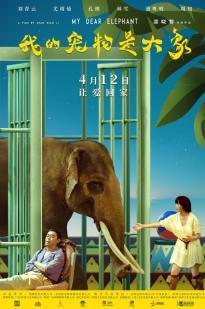 My Dear Elephant