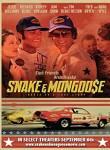 Snake And Mongoose