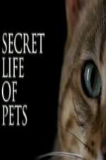 The Secret Life Of Pets: Season 1